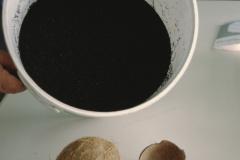 Firma Dr. Pleisch, Kokosnuss als Rohmaterial für Aktivkohle und Endprodukt