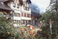 Hof Oberdorf, Schönaustr 24, Brand