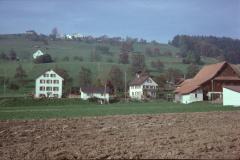 Schulhs.,Scheu., Halde, Wappenswil