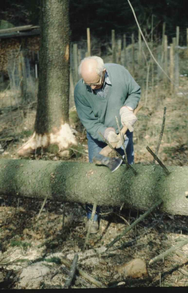 Abasten mit Beil - Ueli Tobler. Bäume fällen wie früher.