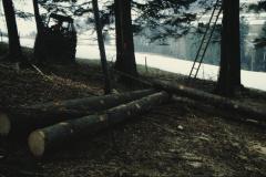 Abschleppen mit Seilwinde. Bäume fällen.