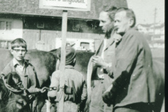 Godi Müller, Peter, Viehprämierung