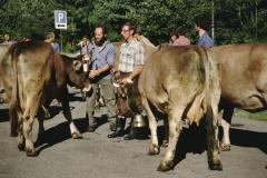 Viehprämierung, Arnold Brunner, HU. Walder