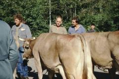 Viehprämierung, Fuhrer E., Fenner Dölf, Bohli Max jun.