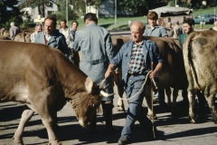 Viehprämierung, Wäfler Fredi