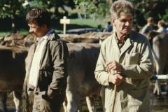 Viehprämierung, Gerhard Fischer, E. Gredig