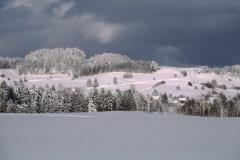 Blick Rtg V.Bettswil, Allenberg