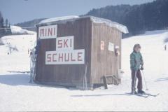Skilift Steig, Mini Skischule
