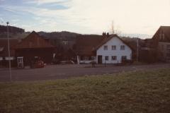 Zelgli, Haus Strimer
