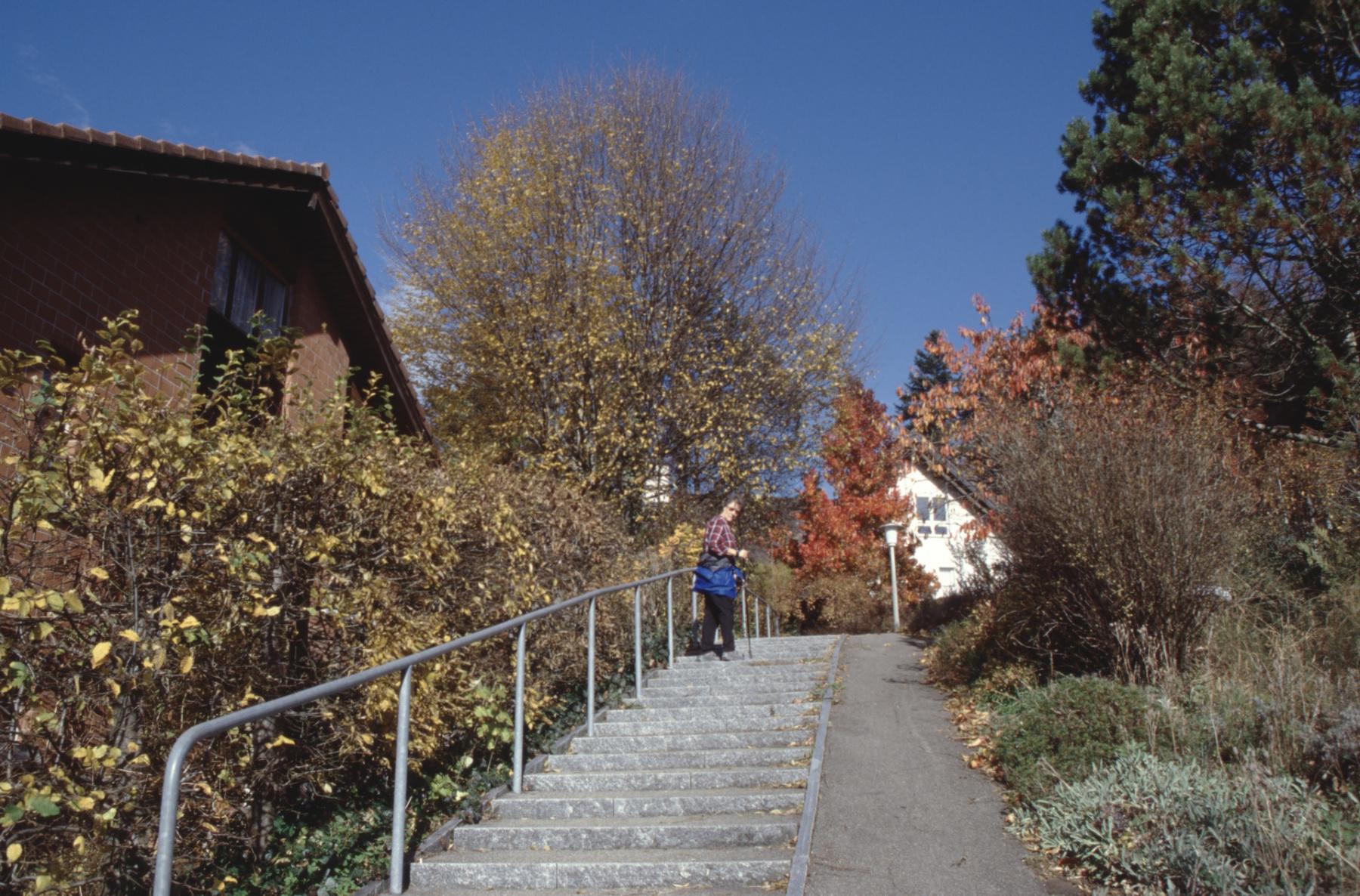 Treppenweg von der Grundstr. zur Kehrstr.