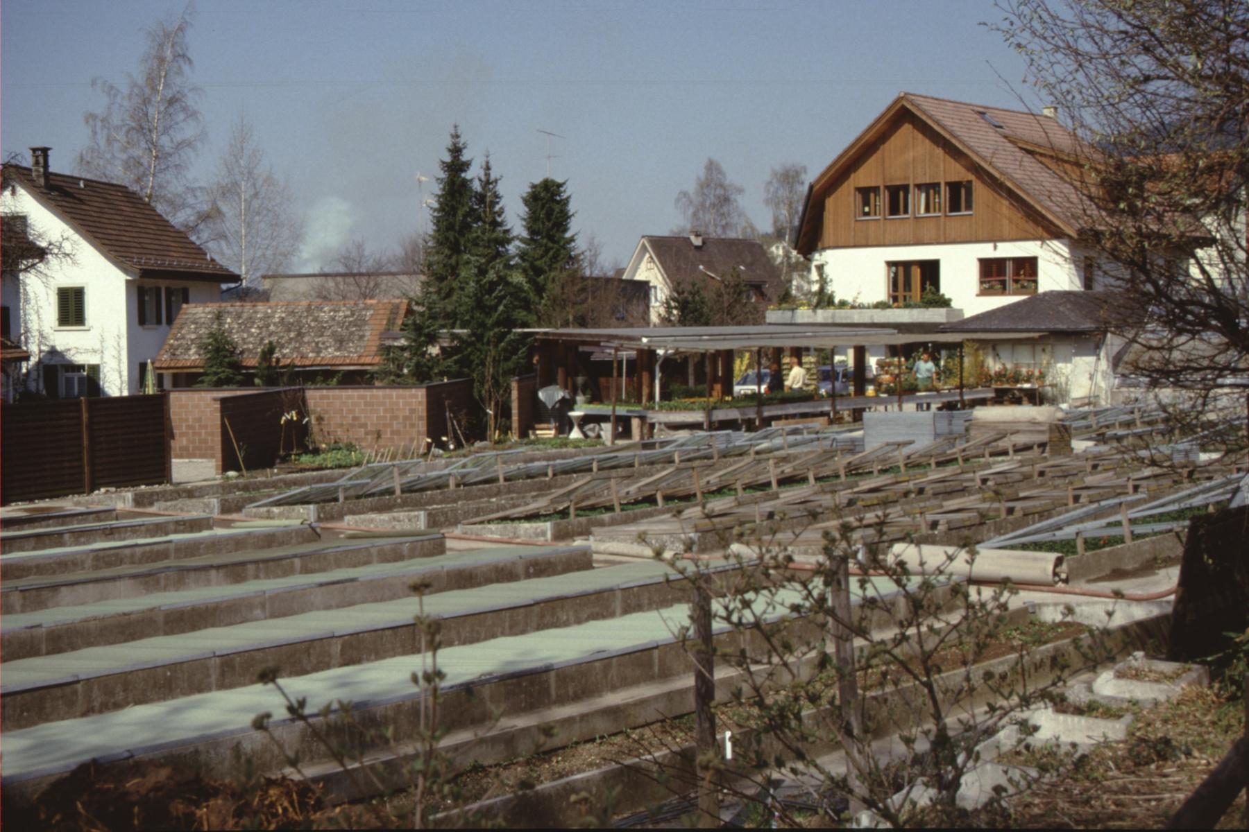 Gärtnerei Struzenegger (Frühbeete)