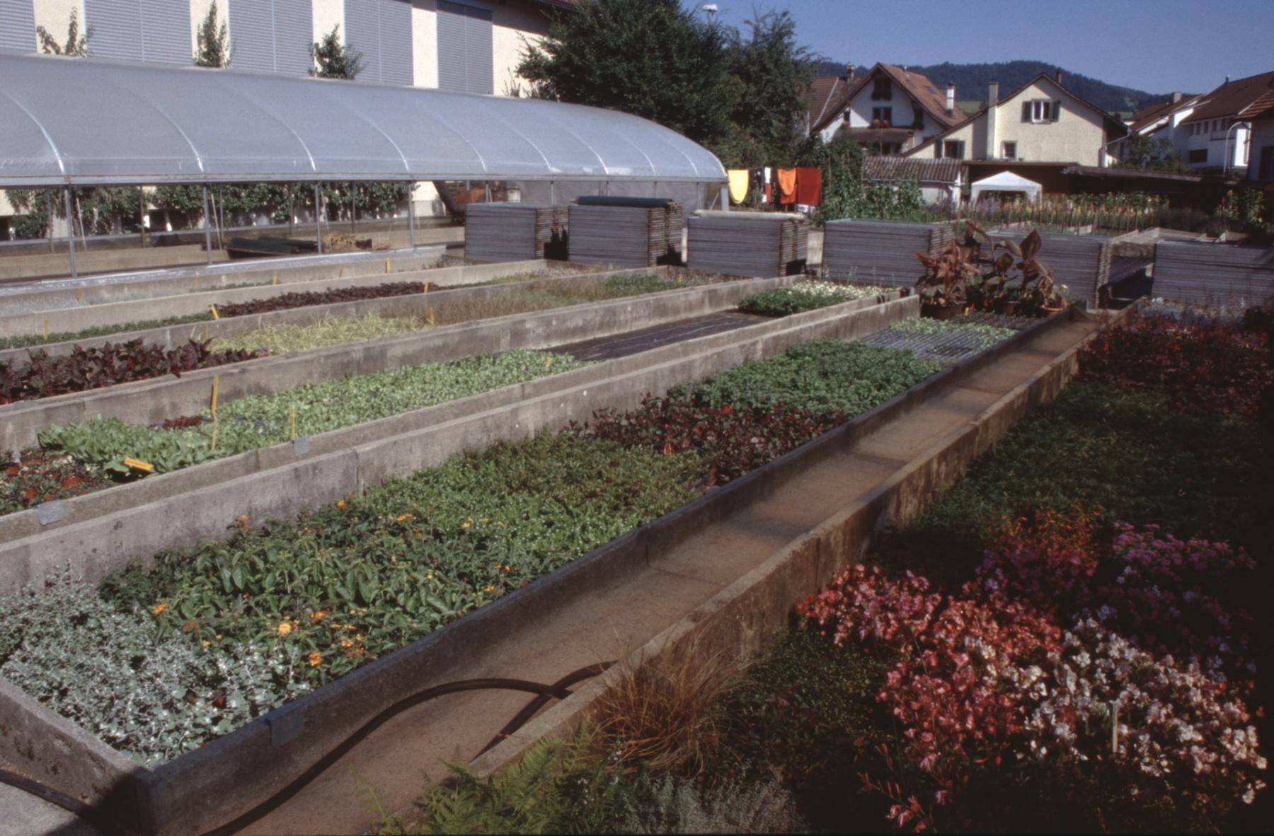 Gärtnerei Struzenegger, Gartenanlage