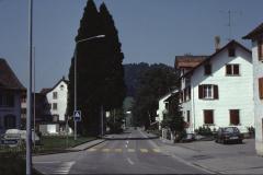 Baumastr., Buchmann, Grimmer, lk. Gde-Haus