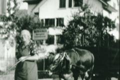 Go grase mit de Chue, Frau Schelldorfer