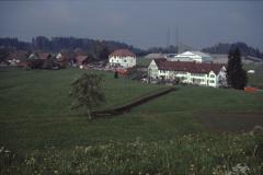 Schürli, Neueggheim