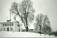 Ref. Pfarrhaus mit  Kastanienbaum
