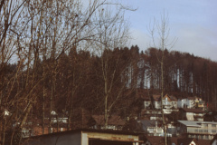 Pfarrhausstr. Ohne Katanienbaum
