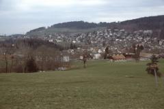 Haldengut, Blick auf Dorf + Aemet