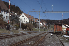 Blick Rtg Ochsen