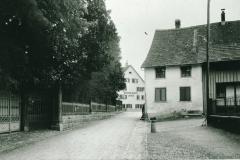 Schulhausstr imHG Linde
