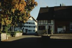 Schulhausstr mit Linde