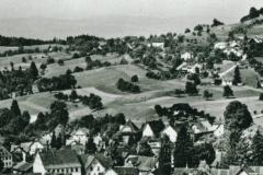 Blick auf das Dorf von oberhalb Waswies