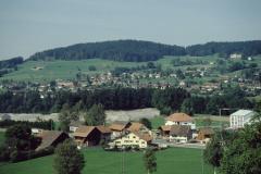 Schürli, Adetswil