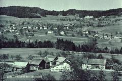 Schürli und Adetswil, Blick von der Steinweid