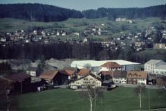 Schürli und Adetswil
