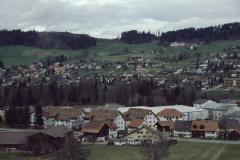 Blick von der Steinweid, Schürli und Adetswil (zu Postkarte 2887)
