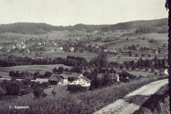 Adetswil + Schürli