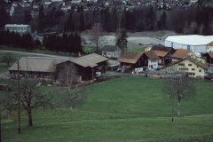 Blick auf Schürliquartier von der Steinweid aus