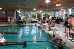 Gaiser Chlausschwimmen 2019, Fiona Robbiani JG2007,  auf Startbock3