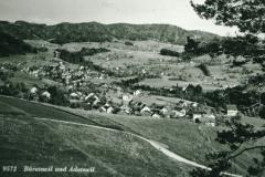 Adetswil & Bäretswil vom Rosinli aus