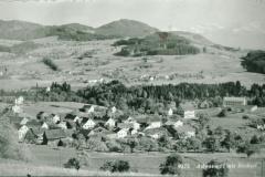 Postkarte. Adetswil & Bäretswil & Bachtel