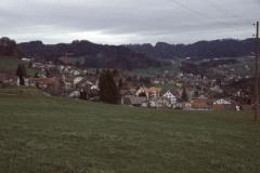 Blick von der Rosinlistrasse auf Adetswil