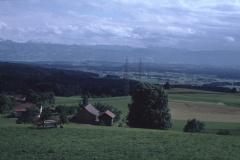 Blick von der Kiesgrube ab Adetswil rtg Etzelkette