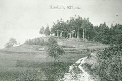 Rosinli 827m
