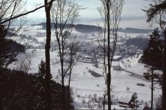 Blick vom Greifenberg aus (Waldschneise)