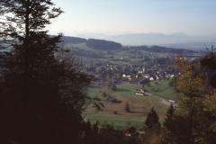 Ausblick vom Greifenberg (Waldschneise)