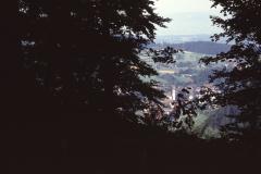 Blick vom Greifenberg aus