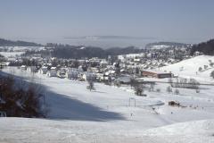Blick auf das Dorf von der Steigstr aus oberhalb Skilift