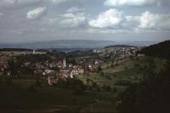 Blick von der Kiesgrube Rüetswil