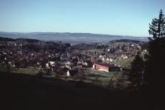 Blick von der Kiesgrube Steig Rtg Dorf