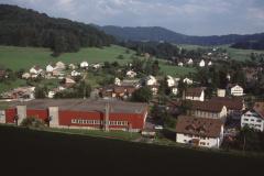 Blick vom Lettenberg