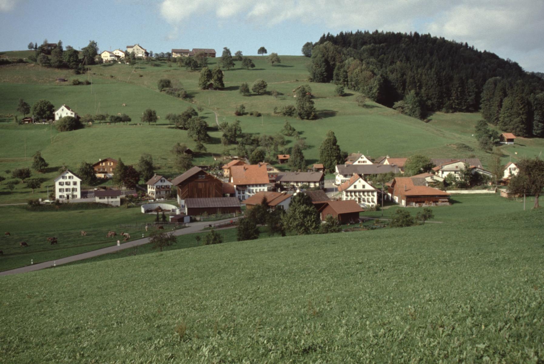 Dörfchen Halde, Allenberg
