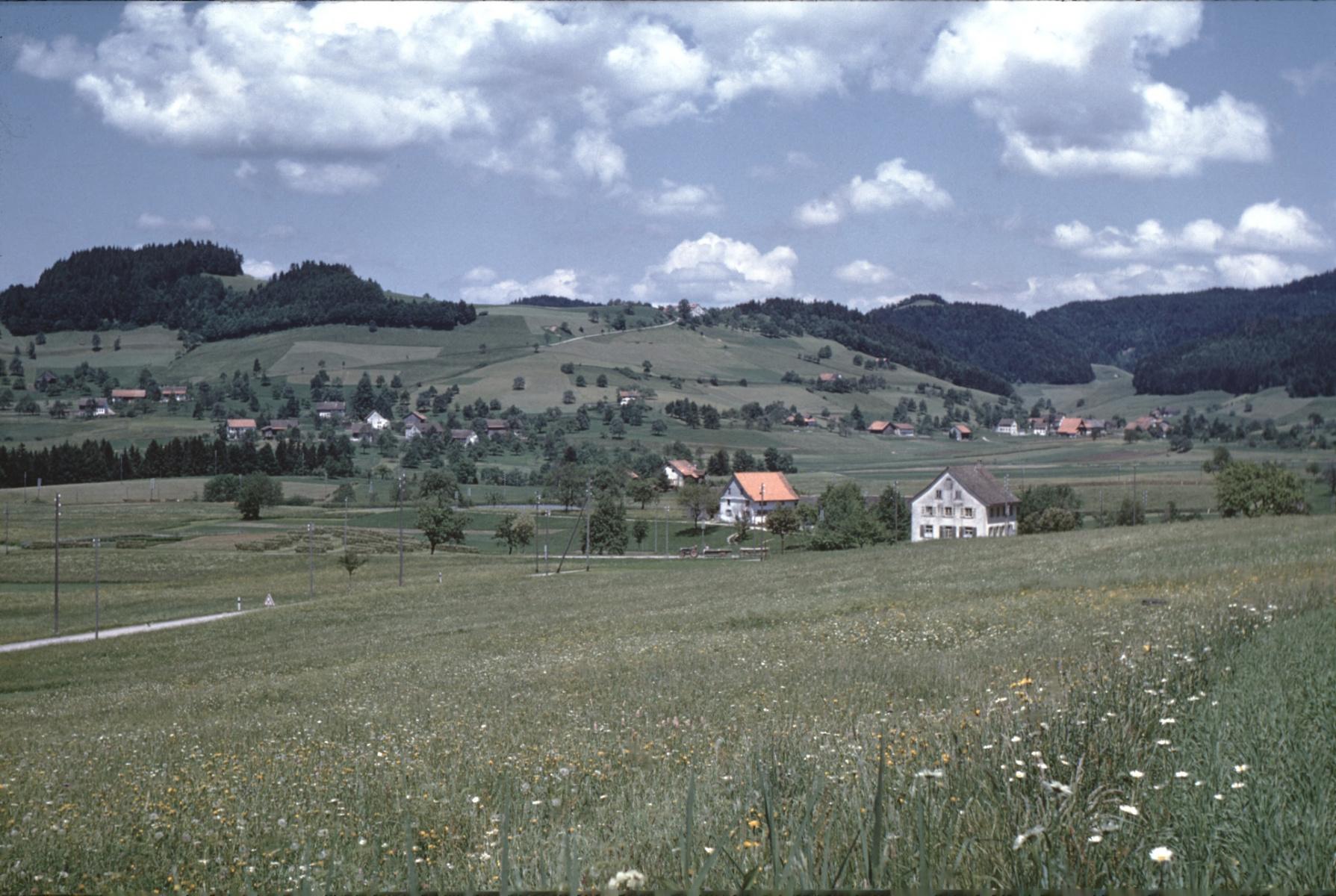 Schulhaus Wappenswil, Vorder-, Hinterb.