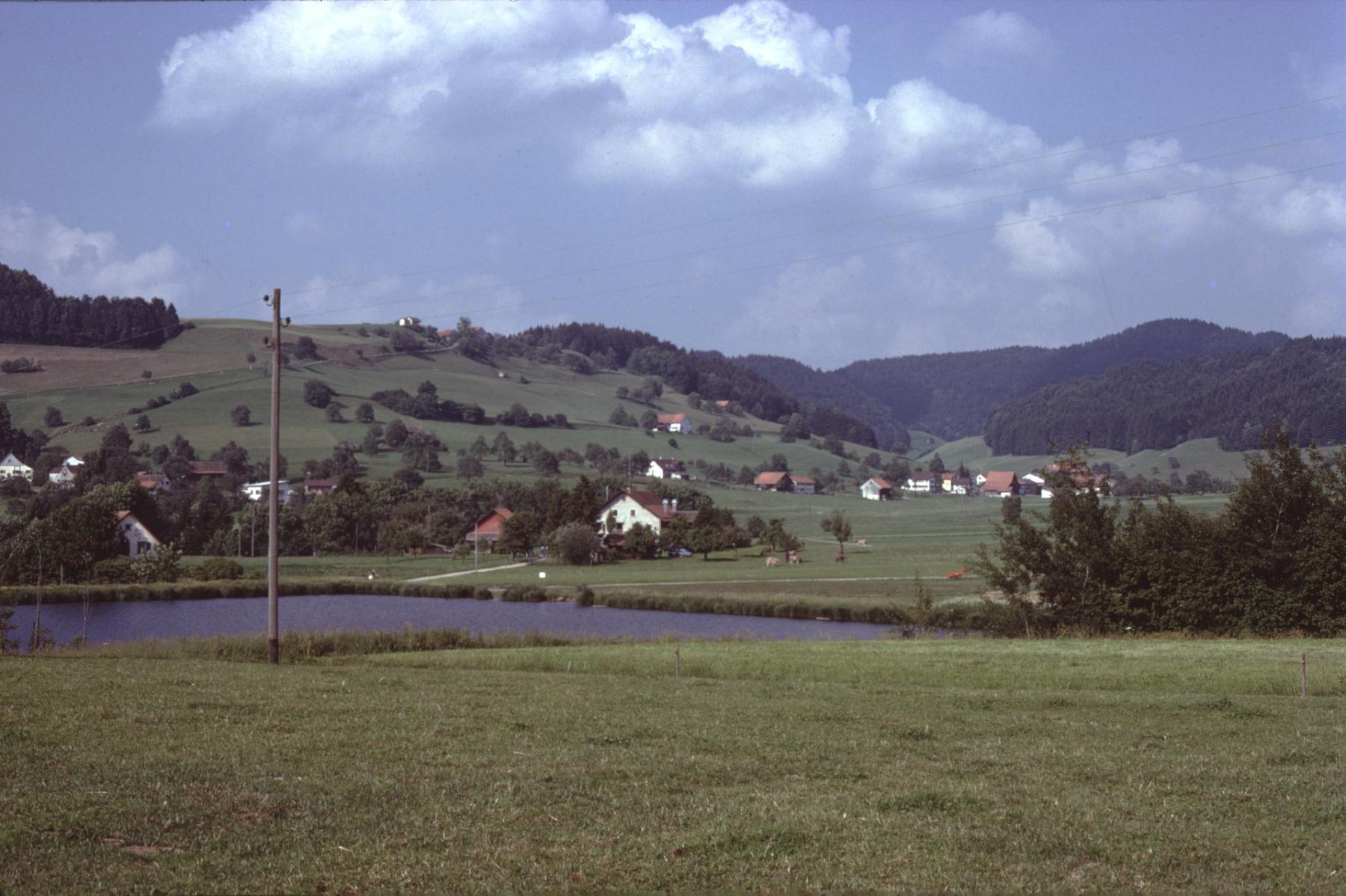 Blick von Stöckweiher Rtg Bettswil-Allenberg