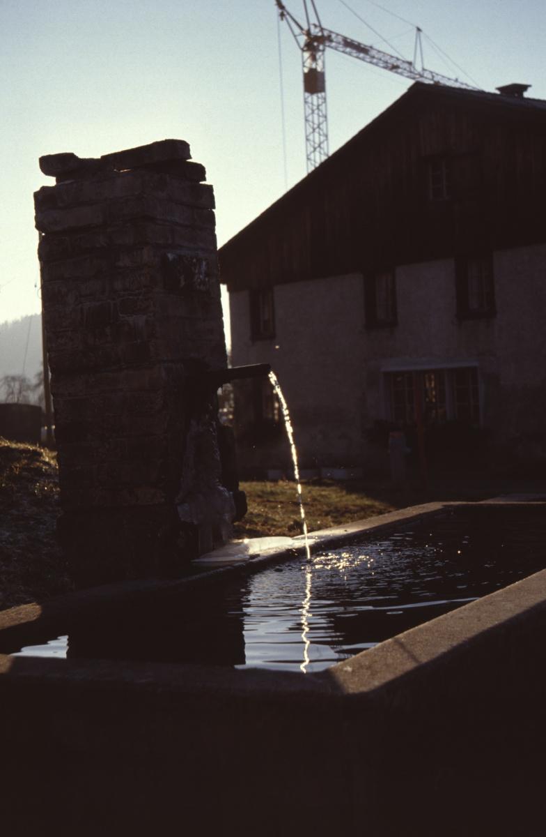 Brunnen vor dem Flarz Brunner, Walder