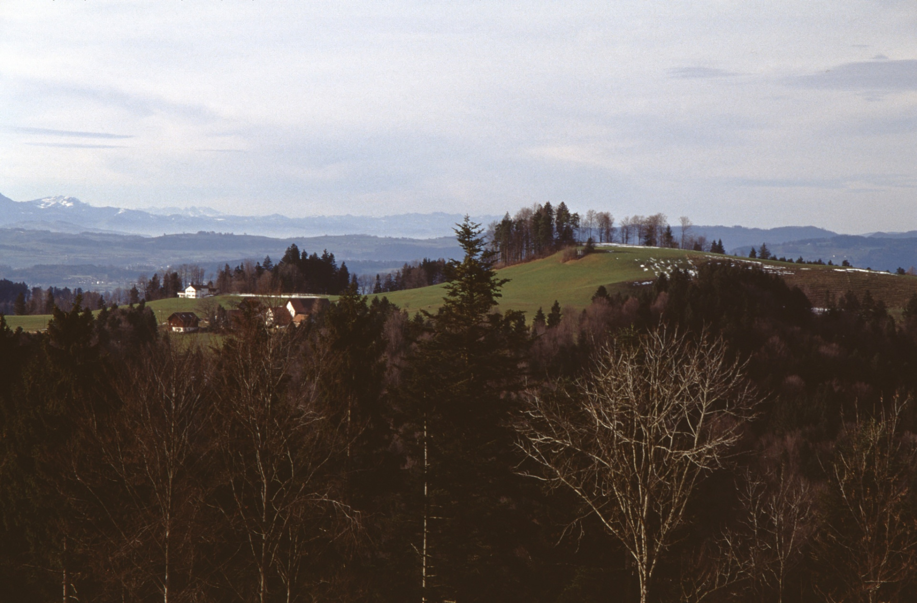 Nähe Sunehof, Blick zum Jakobsberg